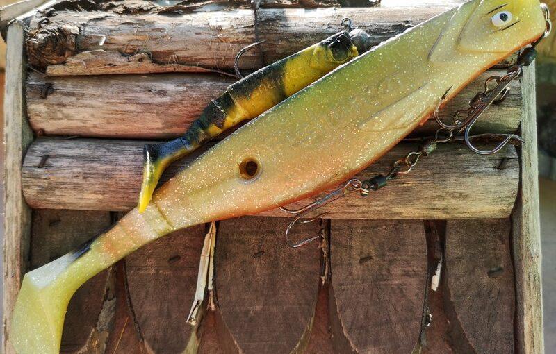 Mikado fishunter. Moje najlepsze kopyto